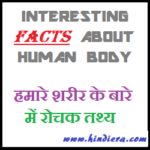 Human Body Facts for Kids